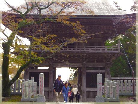 筑波山神社の秋。~イチョウ編~11