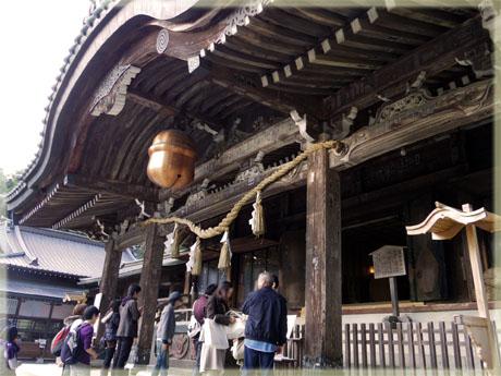筑波山神社の秋。~イチョウ編~8