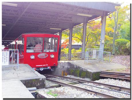 筑波山神社の秋。~もみじ編~5