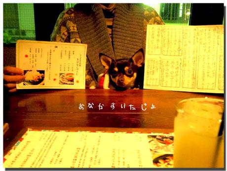 blog20120112a.jpg