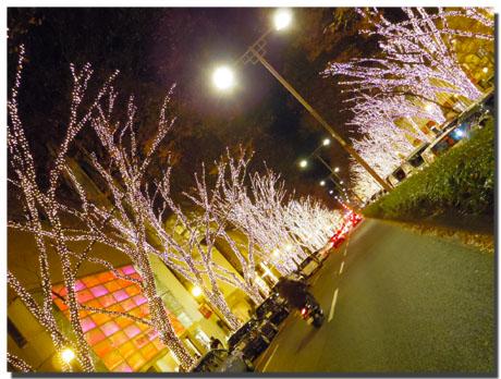 東京イルミネーション巡り。2