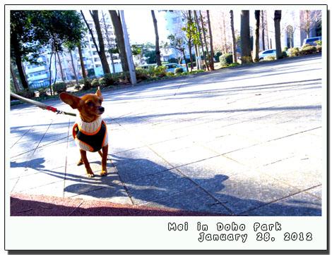 blog20120131e.jpg