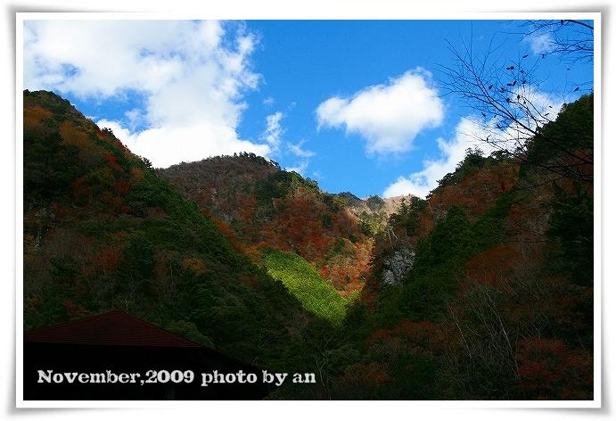 20091114_3680.jpg