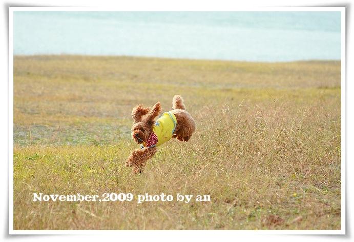 20091115_4048.jpg