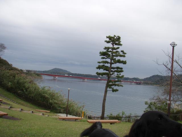 11・19 浜名湖SA