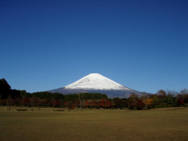 11・20 紅葉と富士