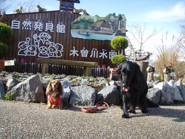 12・12 川島HWO