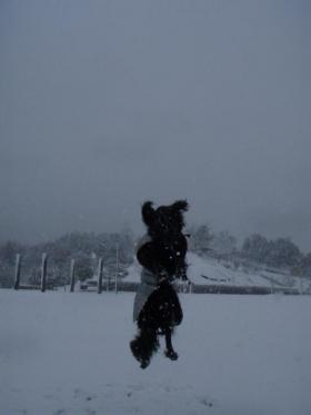 初雪 ジャンプ1