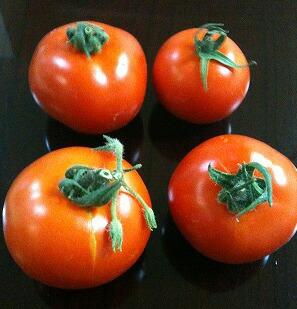 石川トマト