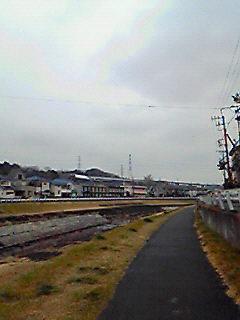 201002111012000.jpg