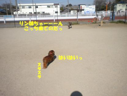 画像 2772