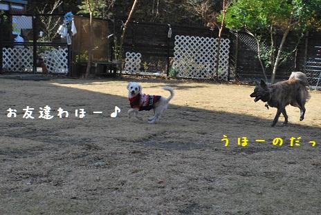 デジイチ 012