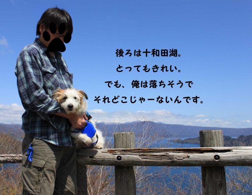 s_十和田湖とラオホ