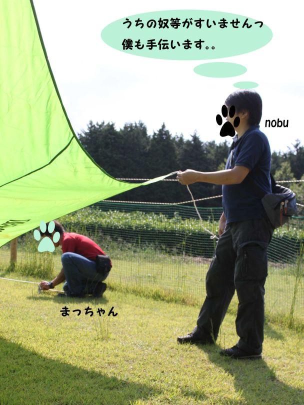 s_お手伝いnobu