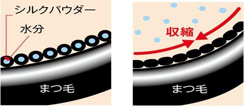 shiru1.jpg
