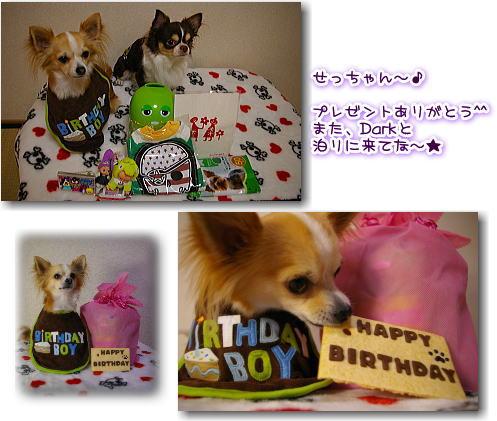 09-11 Ray♪3歳の誕生日4