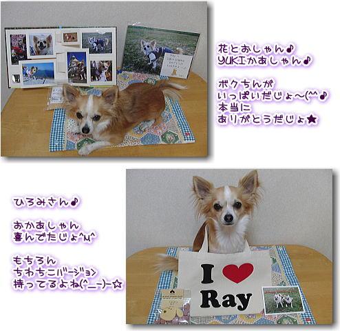 09-11 Ray♪3歳の誕生日5