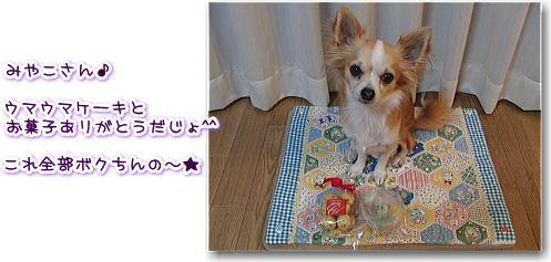 09-11 Ray♪3歳の誕生日10