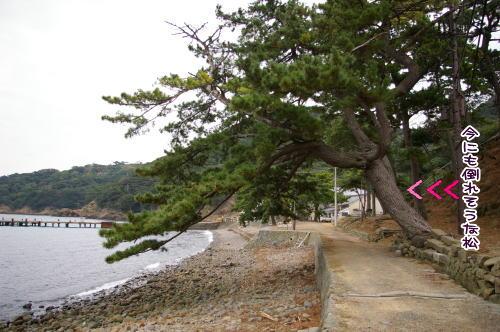 09-12 友ヶ島 5