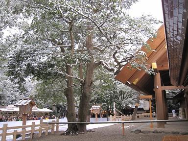 雪の熱田神宮♪