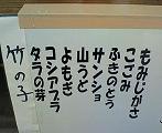 110508山菜3