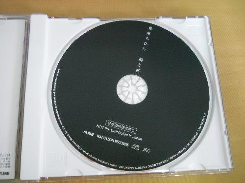 DSCN0567.jpg