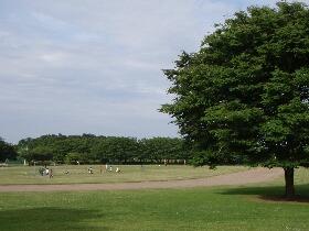 宮代町運動公園2