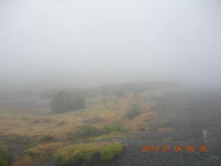 NZ2010004.jpg