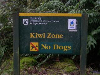 NZ2010006.jpg