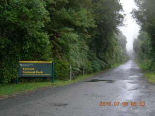 NZ2010008.jpg
