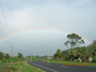 NZ2010029.jpg