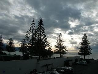 NZ2010055.jpg
