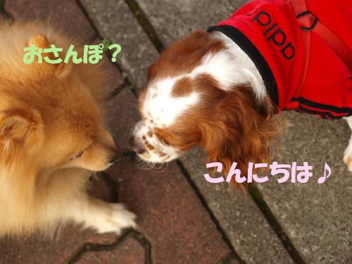 鈴ちゃんとレオ