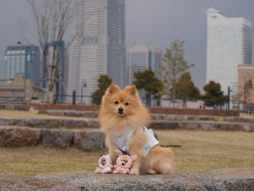 レオ&うさマリンちゃん&パンダルルちゃん