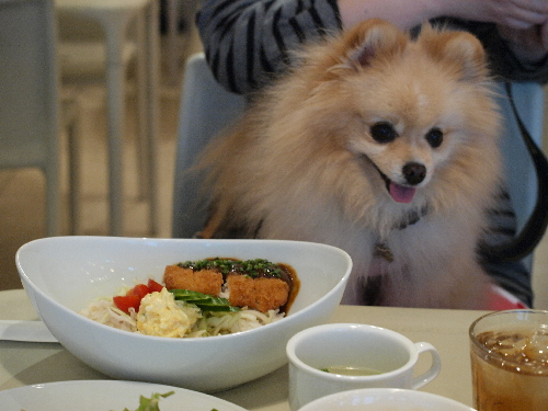 minakoさん食