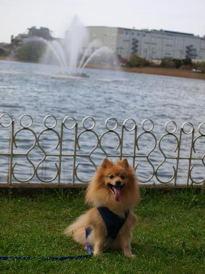 レオ噴水の前で・・・