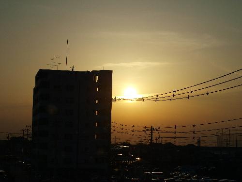 駅からの夕日