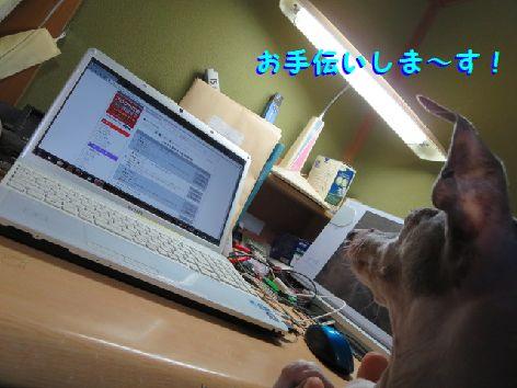 c_20130818214543cfb.jpg