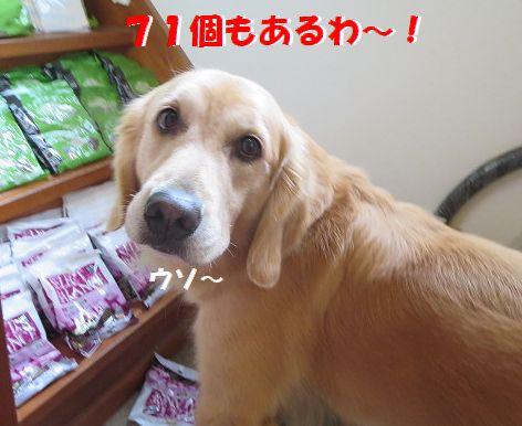 d_20131024200532eba.jpg