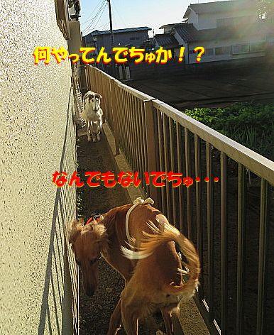 h_20131123013536195.jpg