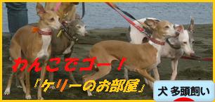 itabana2_20130907220411022.png
