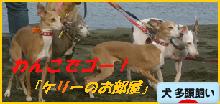 itabana3_20131107233558a1d.png
