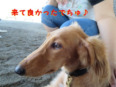 k_20130903231951986.jpg