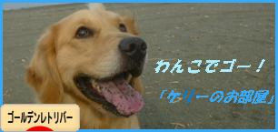 kebana_20130918230315e66.png