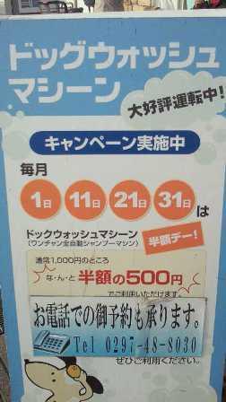 201102051509000.jpg