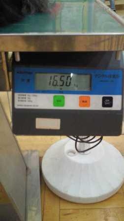201102051651000.jpg