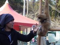 こぼちゃんとお猿_convert_20101230180312