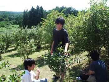 DSCF0540_convert_20100811181207.jpg