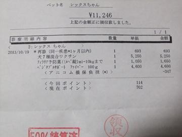 sDSCF5491.jpg