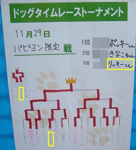 パピヨン限定戦トーナメント表
